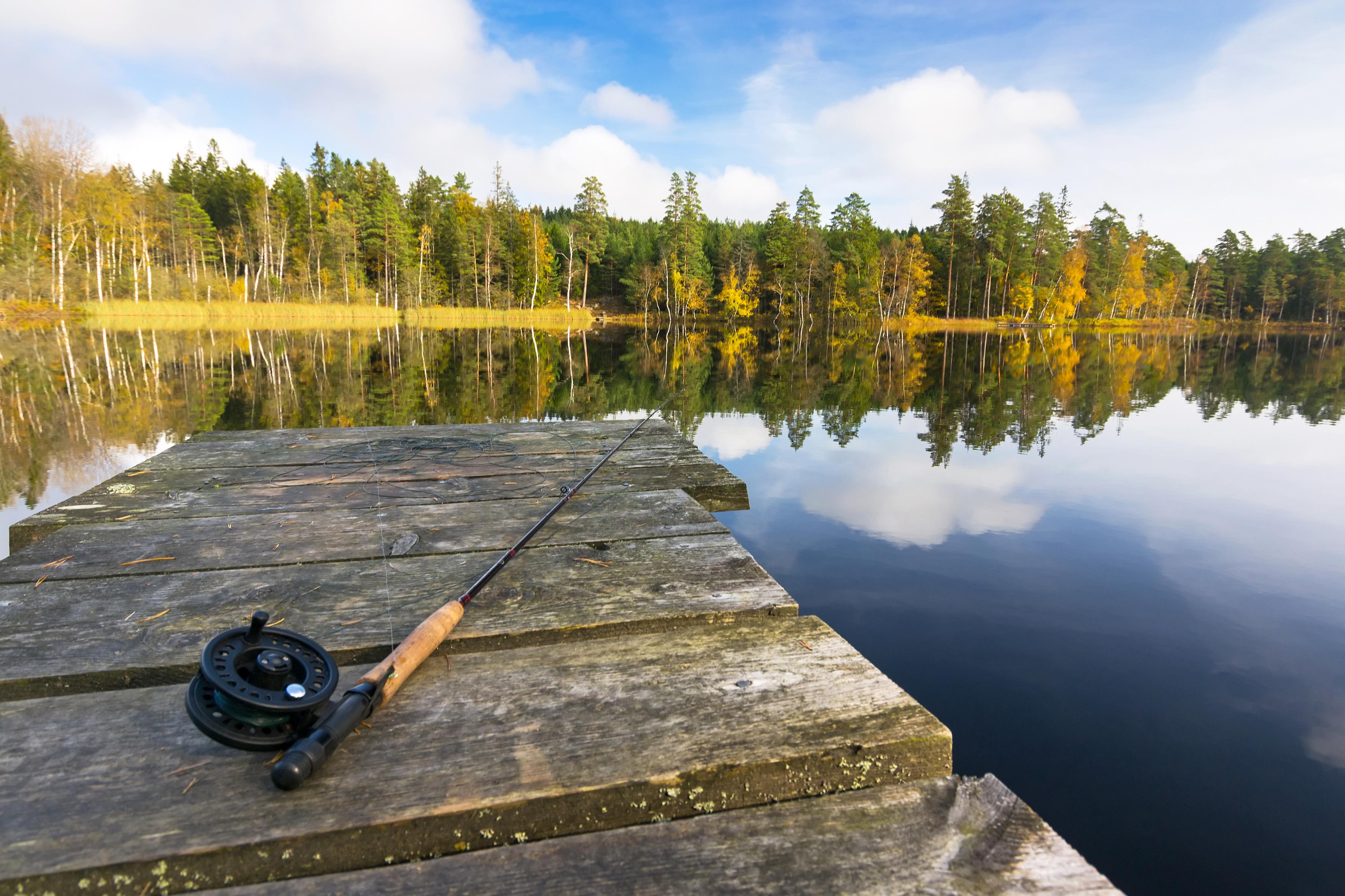 Melinda V Lee - Fly Fishing in Winter Park, CO